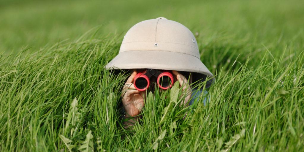 Ein Kind sitzt mit einem Fernglas beobachtend im Gras – ein Symbolbild für die Suchintention.