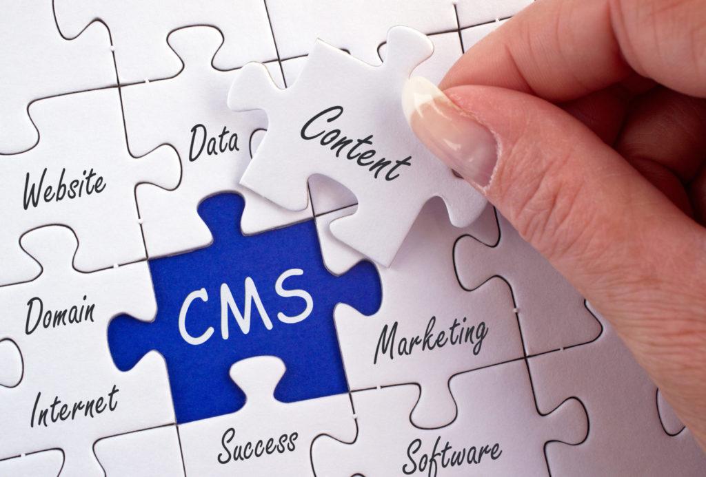 Eine Frau spielt ein Puzzle mit Begriffen wie Website, Marketing, Content und CMS.
